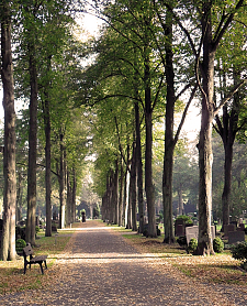 Riensberger Friedhof, jpg, 147.3 KB